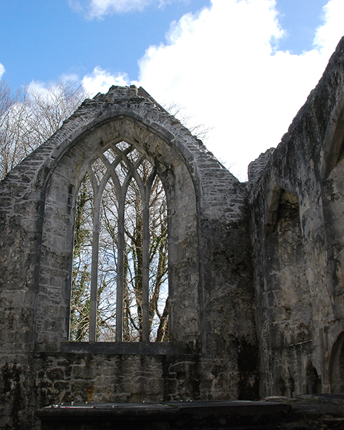 Ireland_muckross_abbey